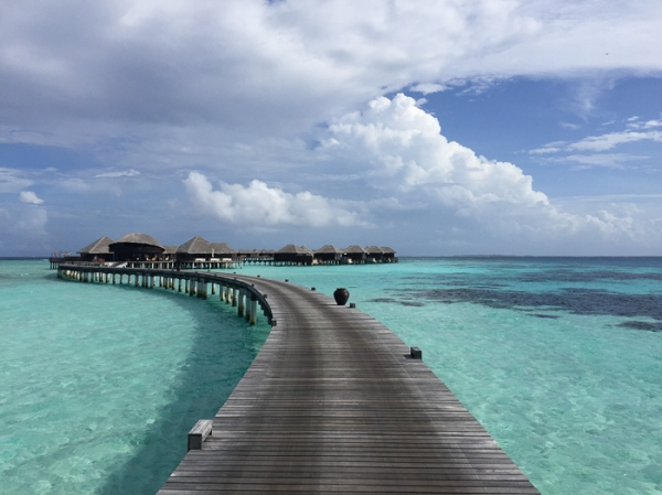 Coco Bodu Hithi - Going to the Maldives-on mycustardpie.com