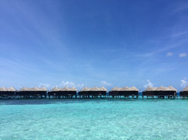 Going to the Maldives-on mycustardpie.com