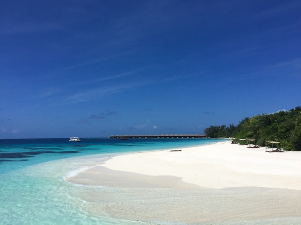 A perfect beach. Going to the Maldives-on mycustardpie.com