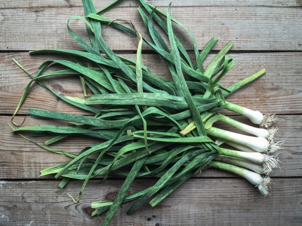 Why Chinese garlic could be dangerous plus vegan garlic aioli recipe on mycustardpie.com