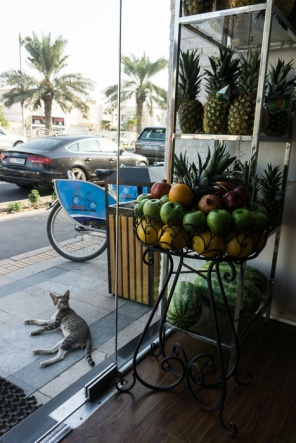 Food tours in Dubai. Read about the best ones on mycustardpie.com