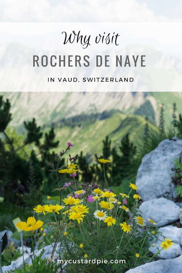 A visit to Rochers de Naye, Vaud, Switzerland