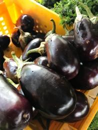 Aubergine - or eggplant Whats in season in the UAE in October