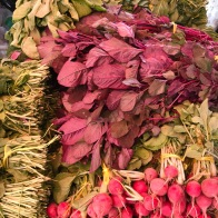 Amaranth - Whats in season in the UAE in October