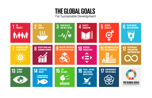 Global goals grid