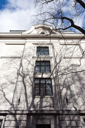 shadows of branches on a building