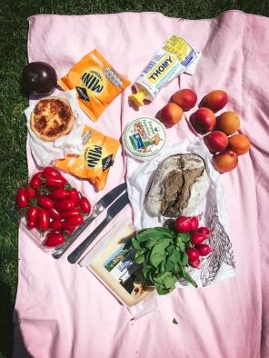 picnic food on pink blanket