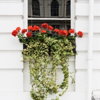 How to tell the story of a hotel - a photo-walk in Notting Hill