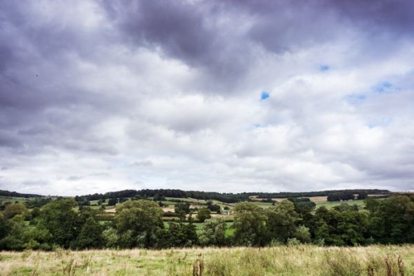 View over field to the Cotswold hills