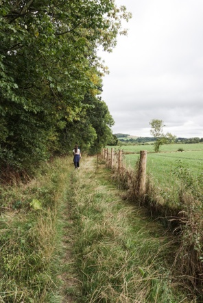 A path along the edge of a wood and field