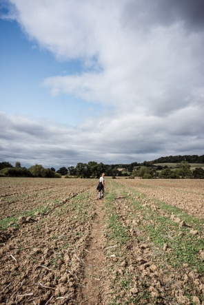 a path across a ploughed field