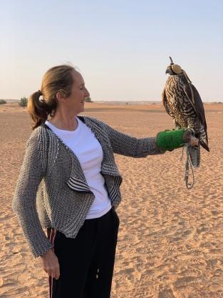falcon on hand