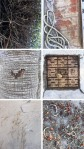 collage of different textures like tree trunks and pavement