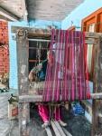 Himachal_Pradesh-5229