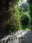 Himachal_Pradesh-5647