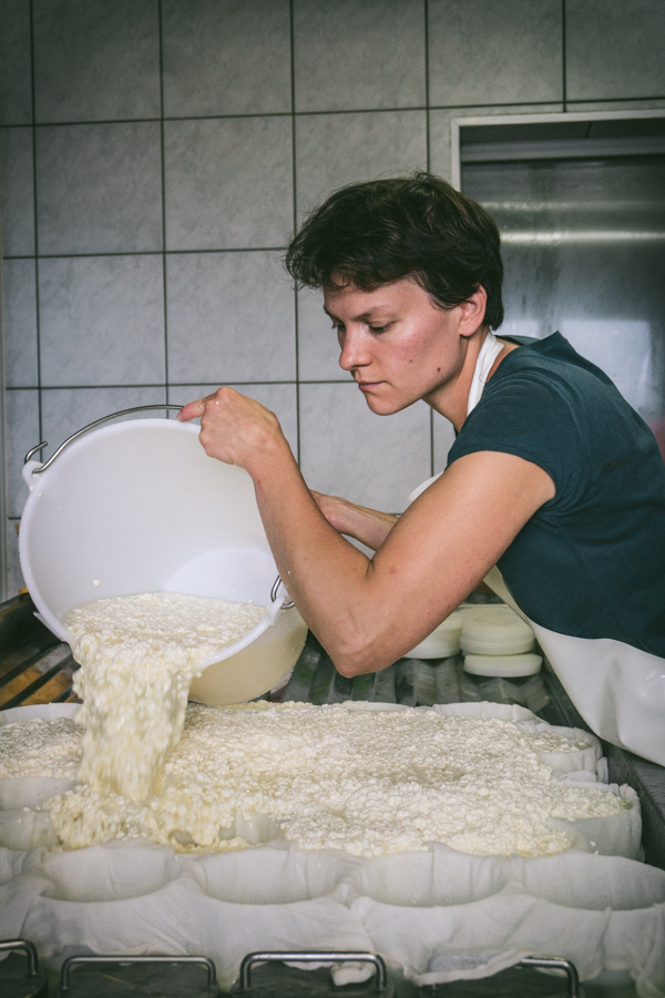 pouring the curds and whey into the moulds